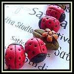 Sativaladybug